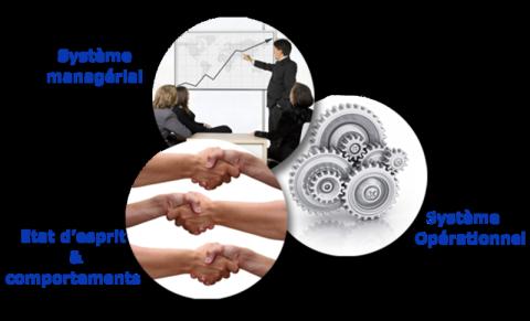 3 sphères organisation